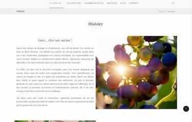 M42 - Création du site e-commerce Purviti, page Histoire